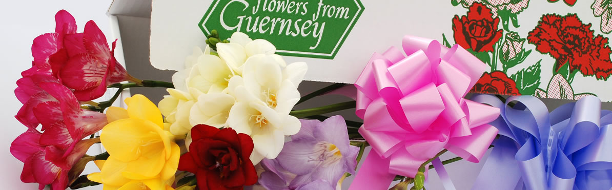 Guernsey Flowers by post - Flower box